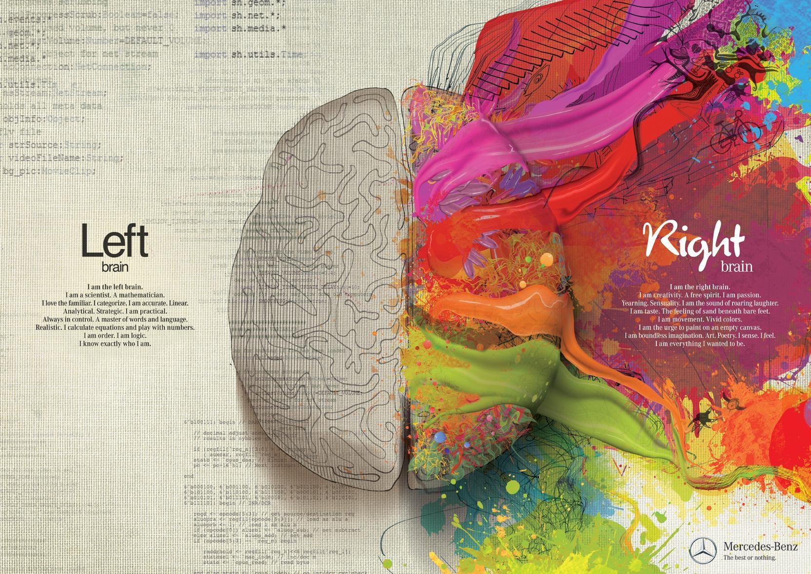 Left_Brain_and_Right_Brain.jpg